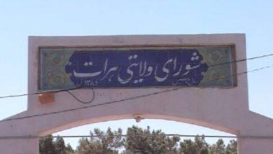 Photo of د هرات ولايتي شورا غړي په خپل منځ کې سره نښتي